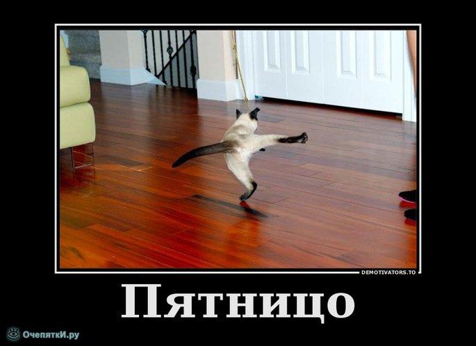 f_272401_209.jpg